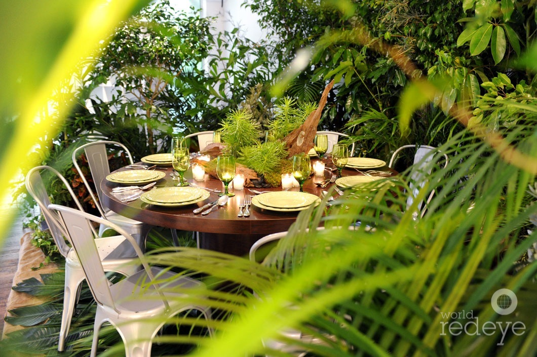 Jungle Lavish Event Rentals Soiree